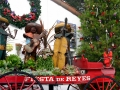 Holidays at Fiesta de Reyes